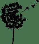 dandelion_logo[1]